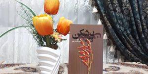 انتشار رمان «بُر شکن»، روایت خواندنی از رنج و تلاش مردمان روستا