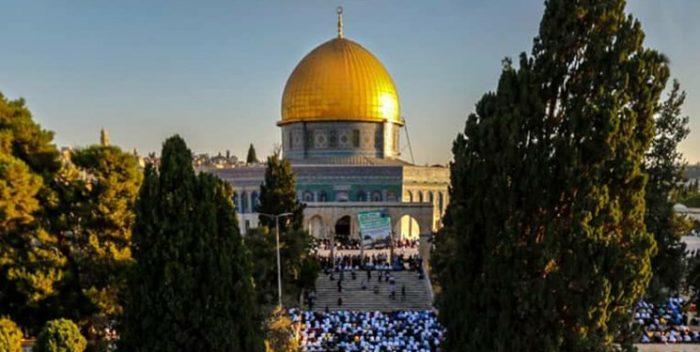 علی داوودی برای حماسه «فلسطین» شعر سرود